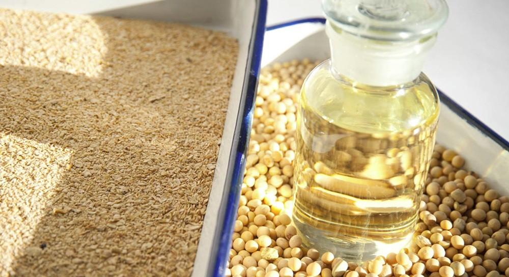 油脂精炼工艺中的过滤解决方案